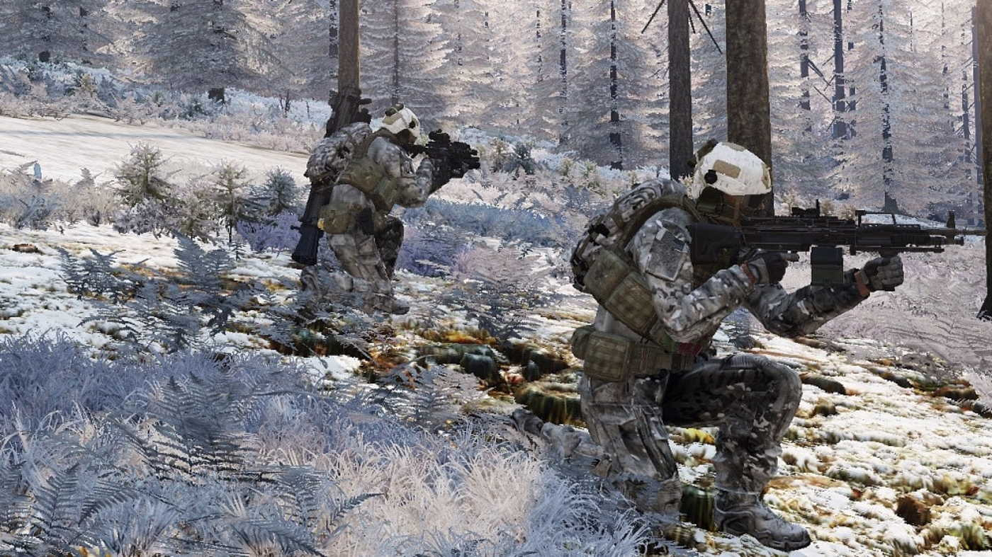 Arma Chernarus Winter
