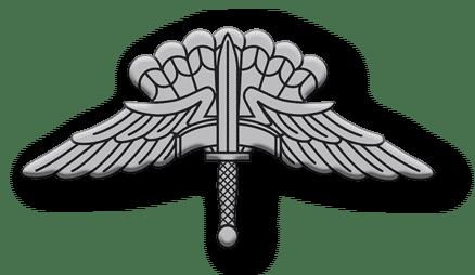 ArmA 3 Clan MilSim - Commander silber