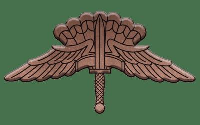ArmA 3 Clan MilSim - command 1 bronze