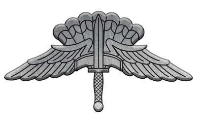 ArmA 3 Clan MilSim - command 2 silver