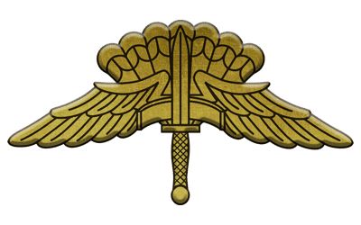 ArmA 3 Clan MilSim - command 3 gold